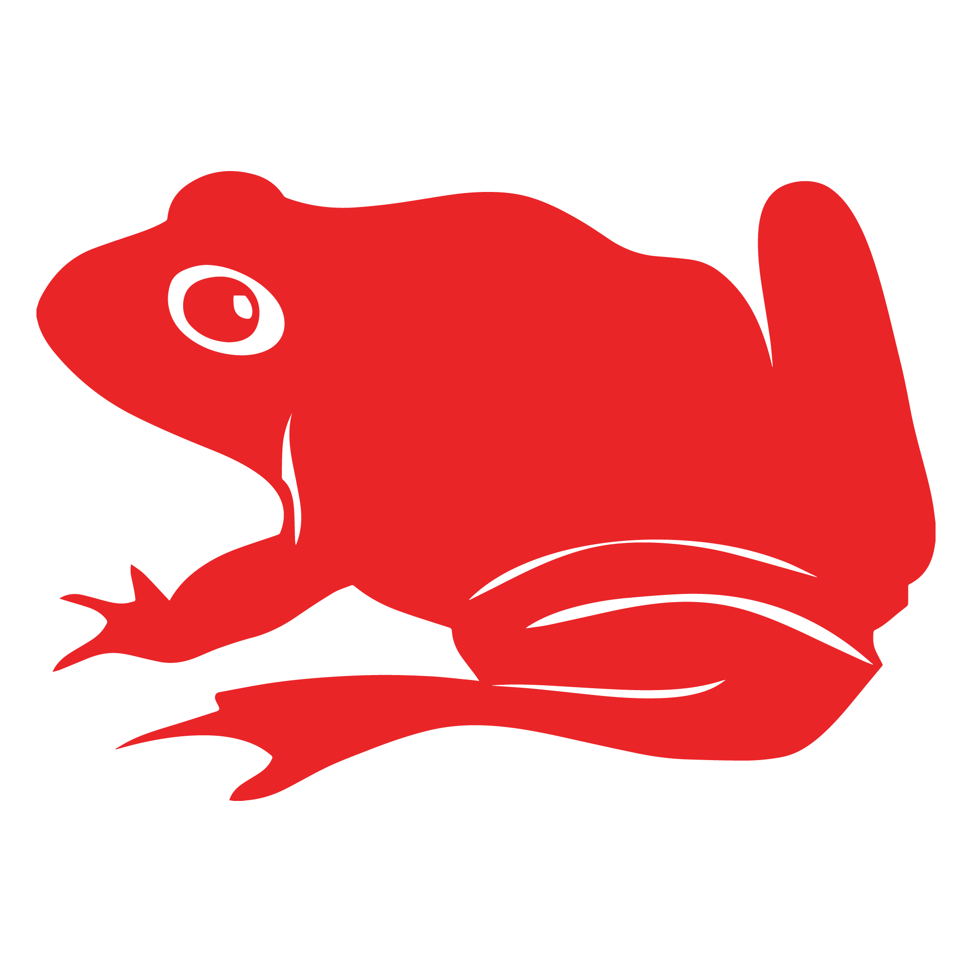 Toad icon